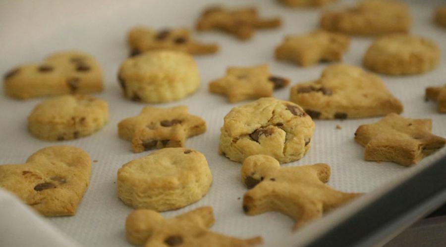 Horno-Cookies-Coco-y-Manuela