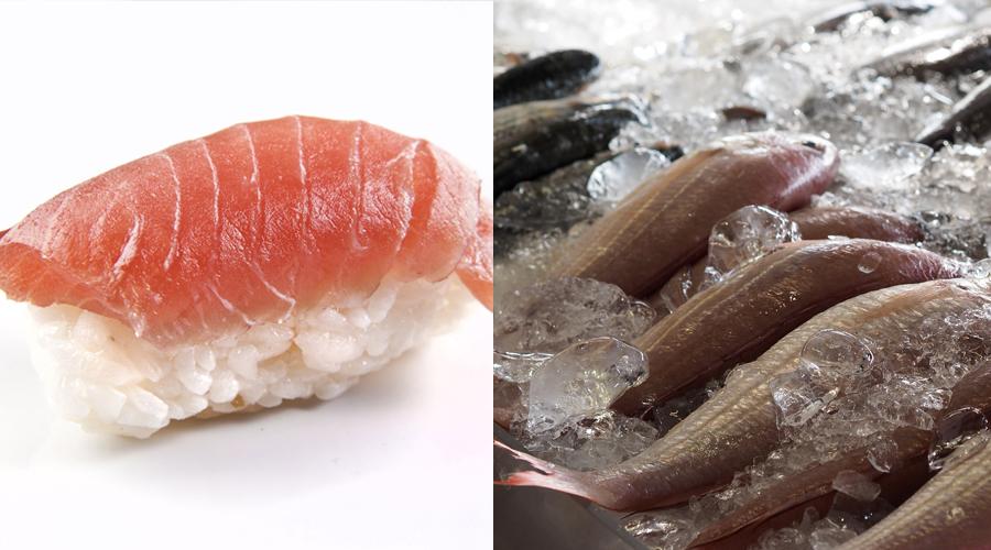 Pescado crudo Embarazadas Alimentacion